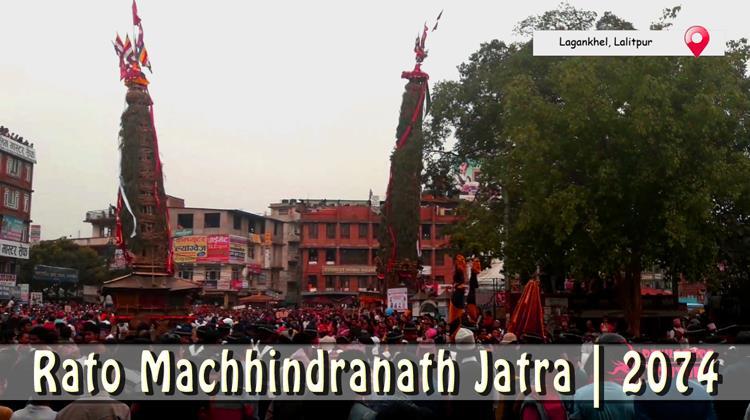Rato Machhindranath Jatra 2074