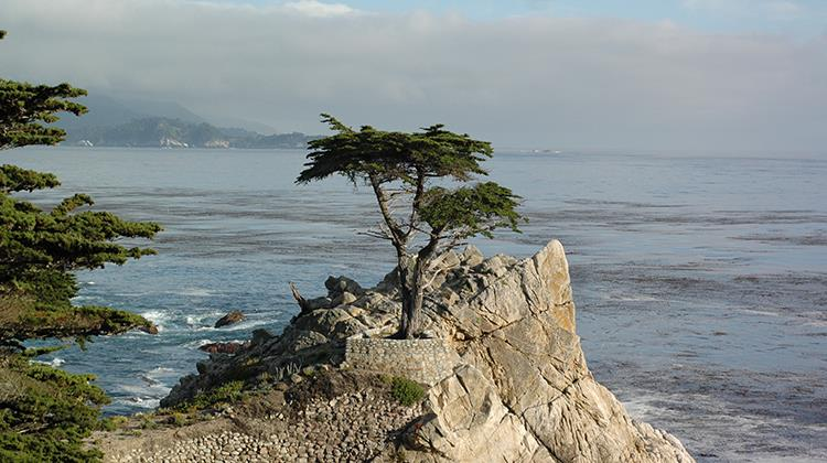 Cypress, California